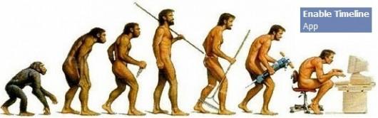 EVOLUTIONtimeline