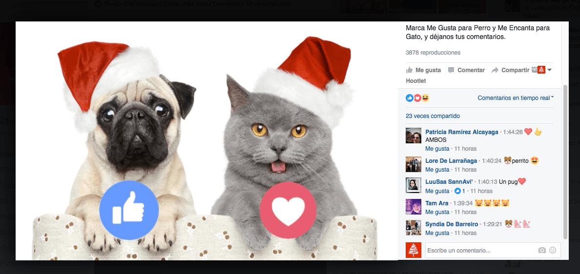 Facebook Live con contador de reacciones